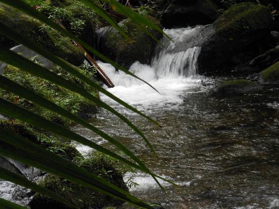 Rio Celeste Hideaway Hotel: Waterfall