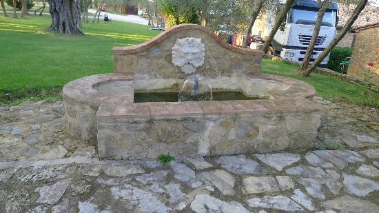 Terre di Nano: Fountain