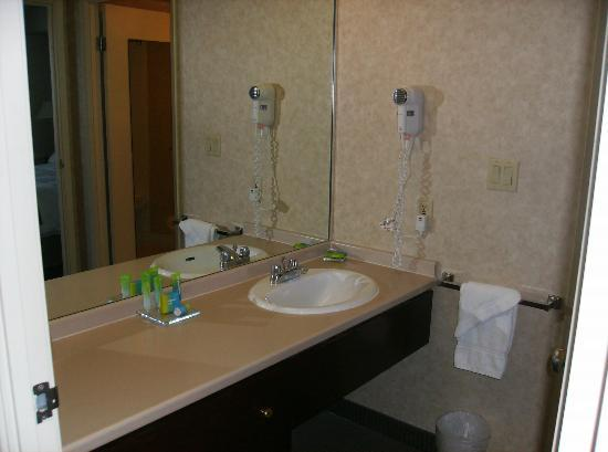 Radisson Suite Hotel Toronto Airport: Bathroom wash up area--toilet area in another room