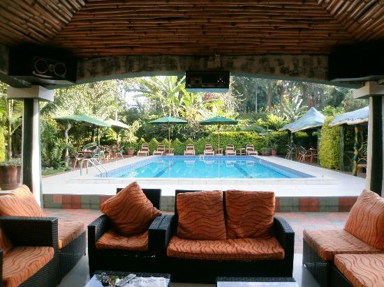 Comfort Gardens Guest House: The gazebo by the pool