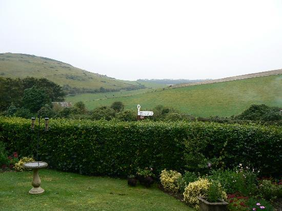 Bindon Bottom B&B: View from the front windows