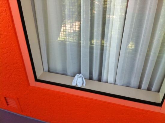 Disney's Pop Century Resort : Little towel pet