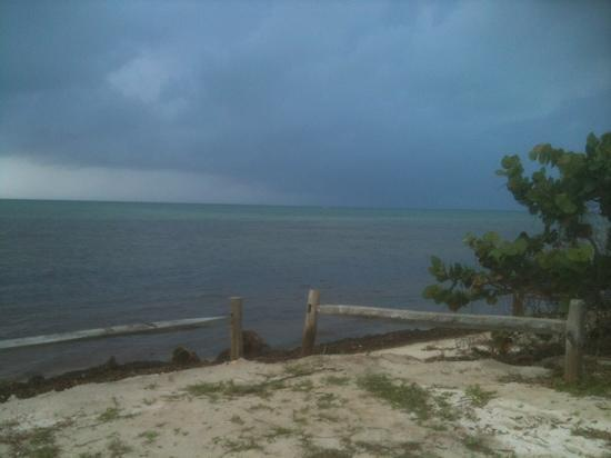 Long Key State Park: in comes the storm