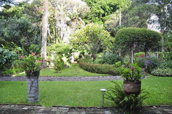 Los Artistas B & B: garden