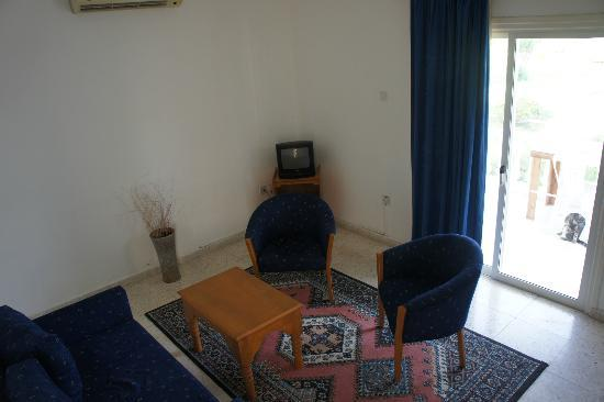 Mountain View Hotel & Villas: Living room, Villa