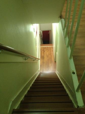 The Greenhouse Effect: les escaliers très raide