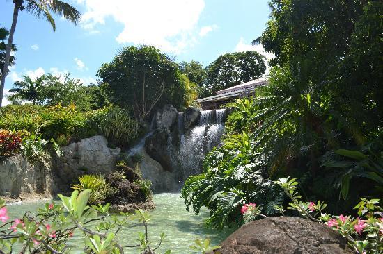 Restaurant panoramique picture of jardin botanique de for Restaurant jardin botanique
