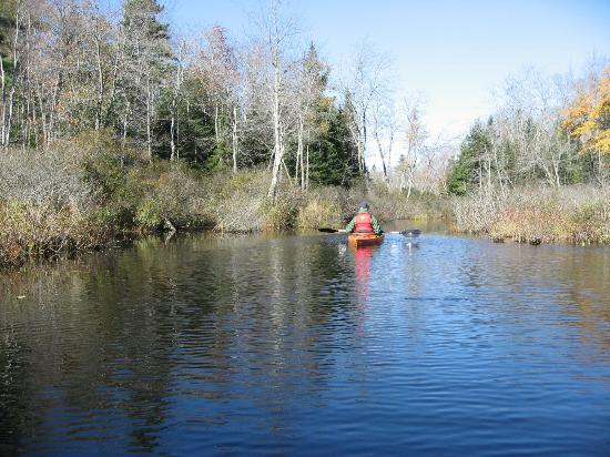 Williams Pond Lodge: kayaking on Williams Pond