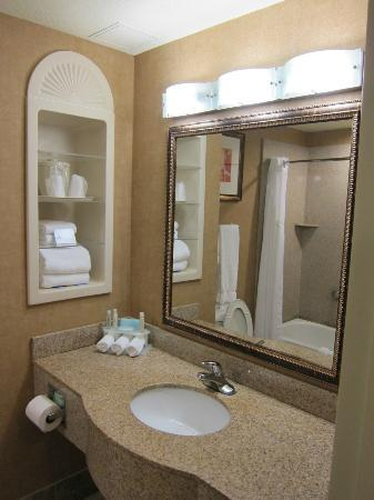 Holiday Inn Express Hotel & Suites Lake Placid : Bathroom with impressive granite counter