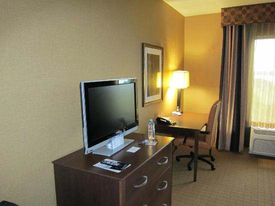 Holiday Inn Express Hotel & Suites Lake Placid: Room's television and desk