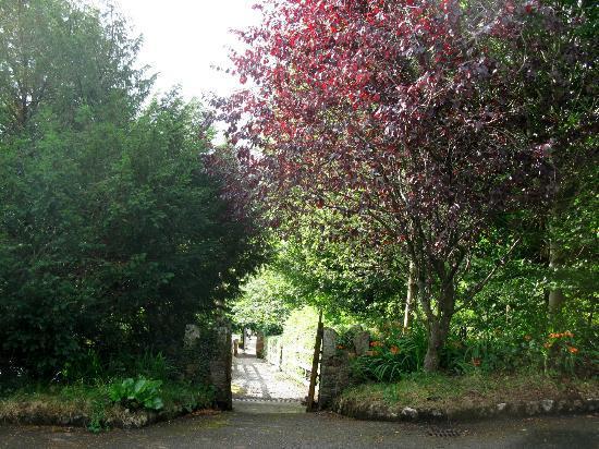 Glendalough Hermitage: Hermitage grounds 