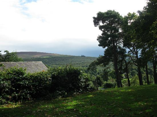 Glendalough Hermitage: Outside my cottage
