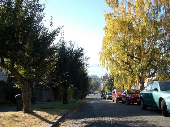 Queen Anne Hill: Fall Colors