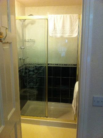 The Bringewood Guest House: en suite room 3