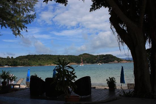 Samui Honey Cottages Beach Resort: fromt he pool