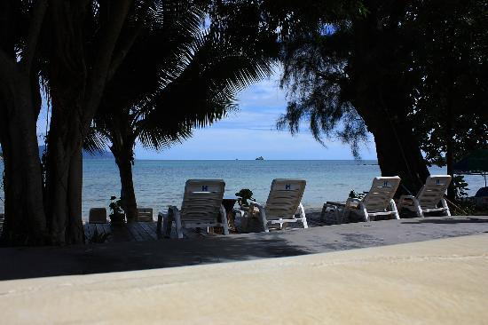Samui Honey Cottages Beach Resort: from the pool