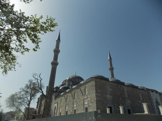 Fatih Mosque and Complex: fatih cami