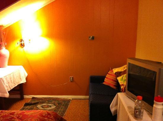 Vintage Motel: Room 21