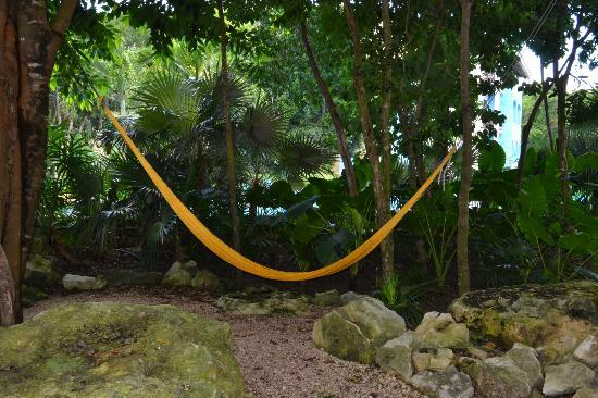 Occidental at  Xcaret Destination: hammocks are everywhere to sit in!