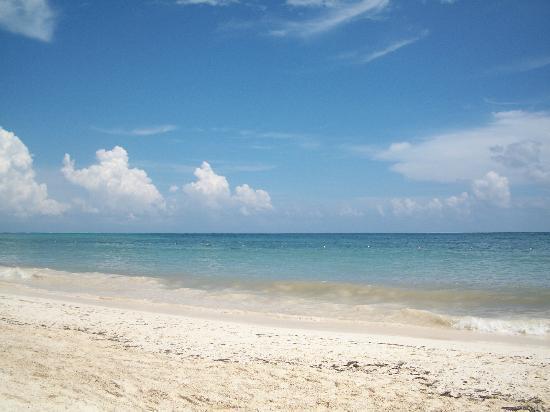 Ocean Coral & Turquesa: Beautiful day at the beach