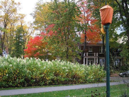 Auberge Aux Deux Lions: Parc, decorated for Halloween