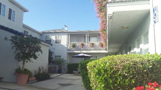 Ocean Park Inn: vista hotel