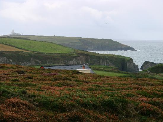 Henry's Boutique Destination: from field above house, over the roof to Galley Head Lighthouse