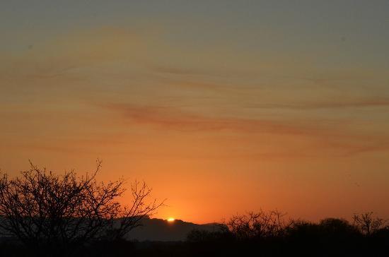 Tangala Private Camp: Complimentary bushveld sunset