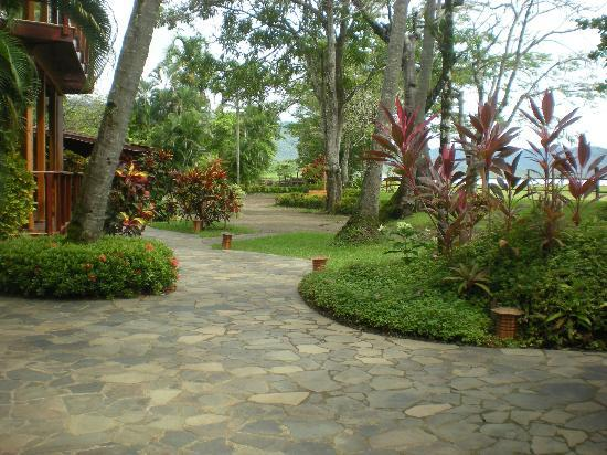 Tambor Tropical Beach Resort: Hotel grounds