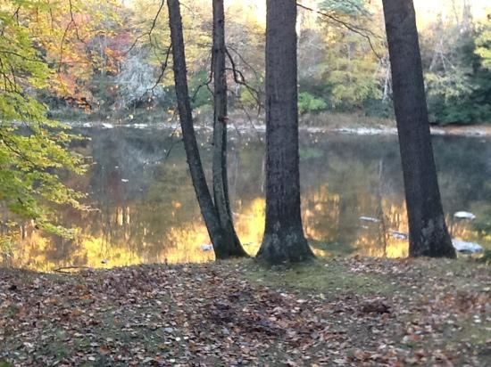 Clear Creek State Park: view from porch of cabn 21