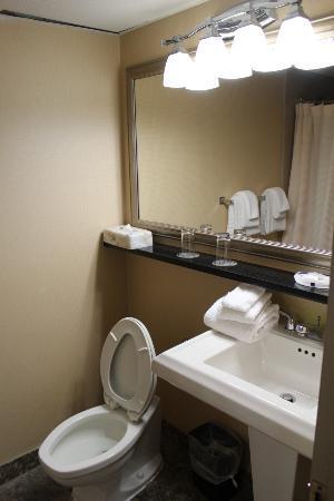 โรงแรมวินด์แฮมการ์เดนนวร์กแอร์พอร์ต: 1