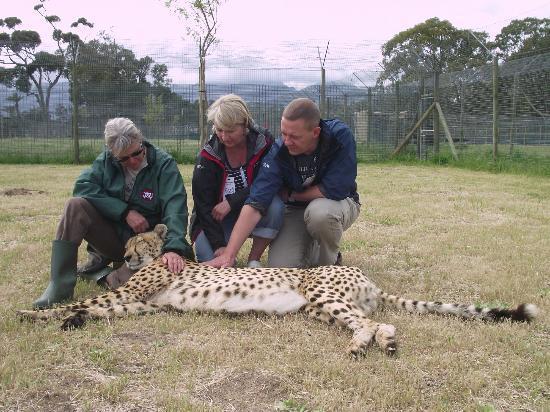 Asara Wine Estate & Hotel: Spiers outreach cheetah sanctuary