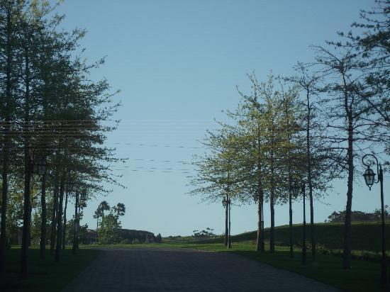 Asara Wine Estate & Hotel: Beautiful drive up to Asara