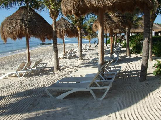 Secrets Silversands Riviera Cancun : The Beach