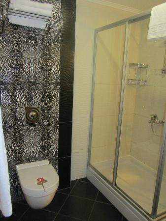 DELTA BEACH RESORT: Bathroom - shower only, no bath