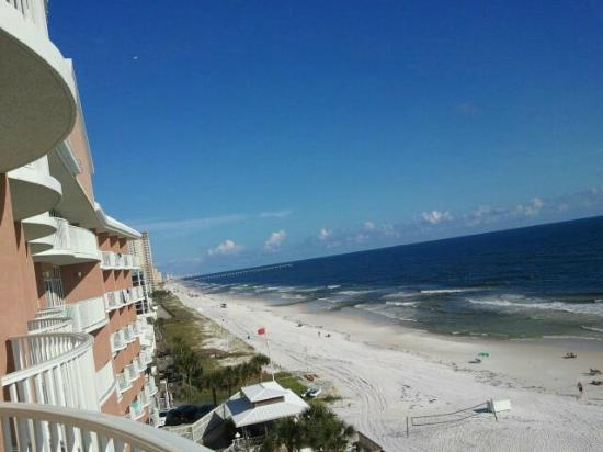 Palmetto Inn & Suites : View from the room
