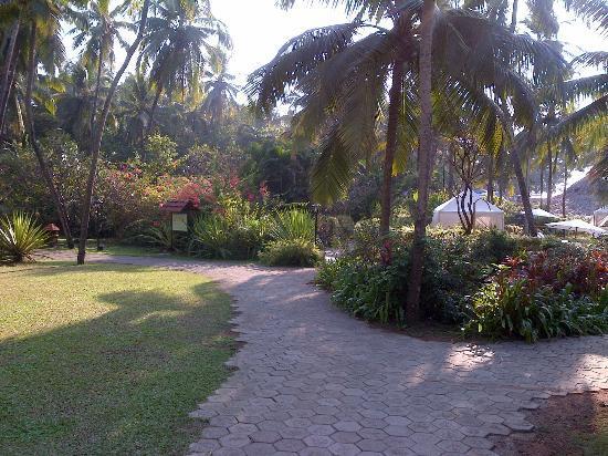 Gardens Picture Of Taj Holiday Village Resort Spa