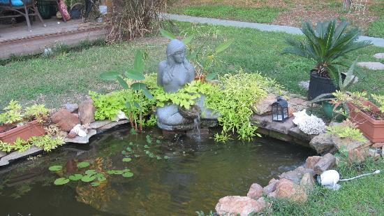Hotel Storyville: Fish pond outside with a tiki bar and beach house sitting area