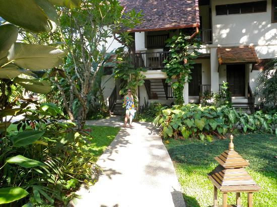 Lanna Dusita Boutique Resort by Andacura : Beautiful and lush