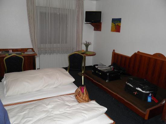 Hotel Zum Frohlichen Turken: Room