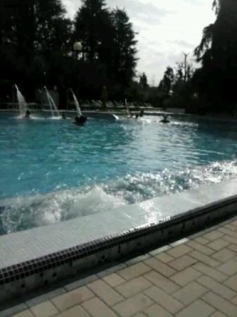 Hotel Terme Metropole: Una delle piscine con idromassaggi in funzione