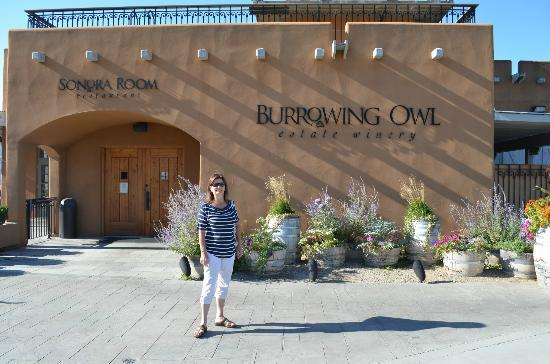 Wine Tours Gone South : Burrowing Owl Winery