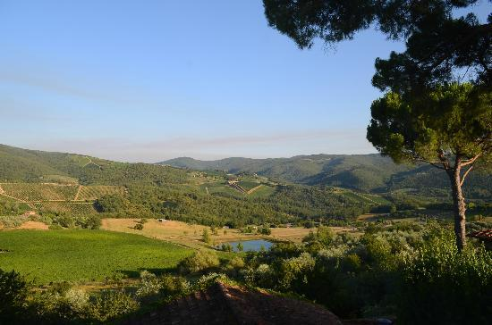 Villa Le Barone : view from room 26