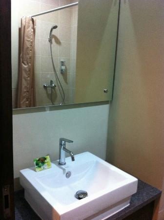 Praja Hotel Bali : Shower