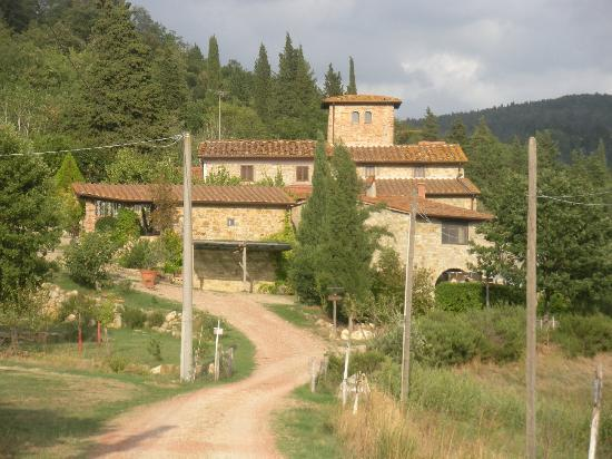 Driving up to the Podere Vignola farmhouse