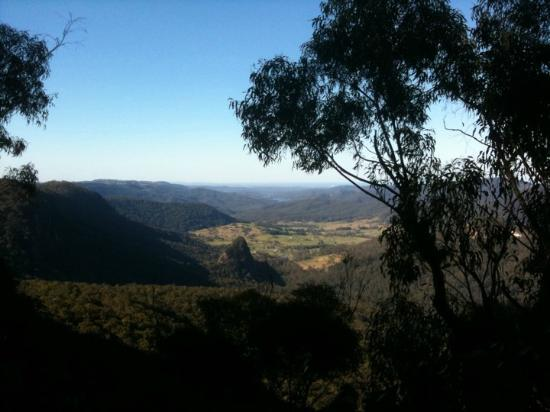 Binna Burra Mountain Lodge: View from a walk.