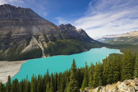 Peyto Lake: A view of the lake showing the meltwater inlet
