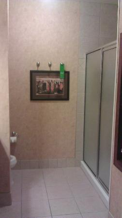 Hampton Inn & Suites Stephenville: Large bathroom with walk-in shower