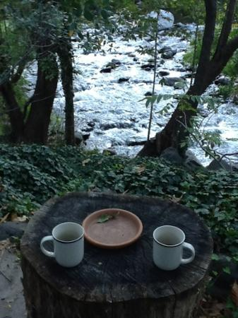 Briar Patch Inn: Morning coffee by the creek