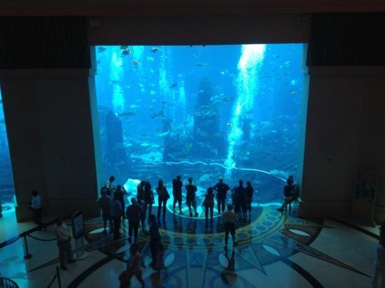 Aerial View Picture Of Atlantis The Palm Dubai
